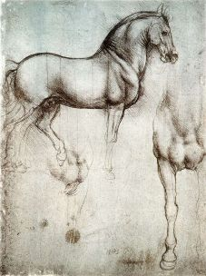 640px-Study_of_horse